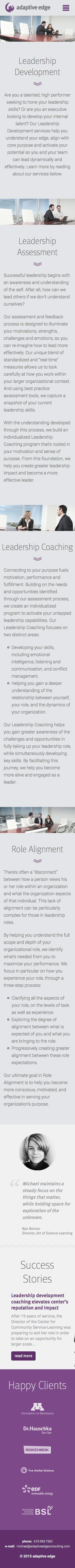 ignyte web design agency responsive leadership